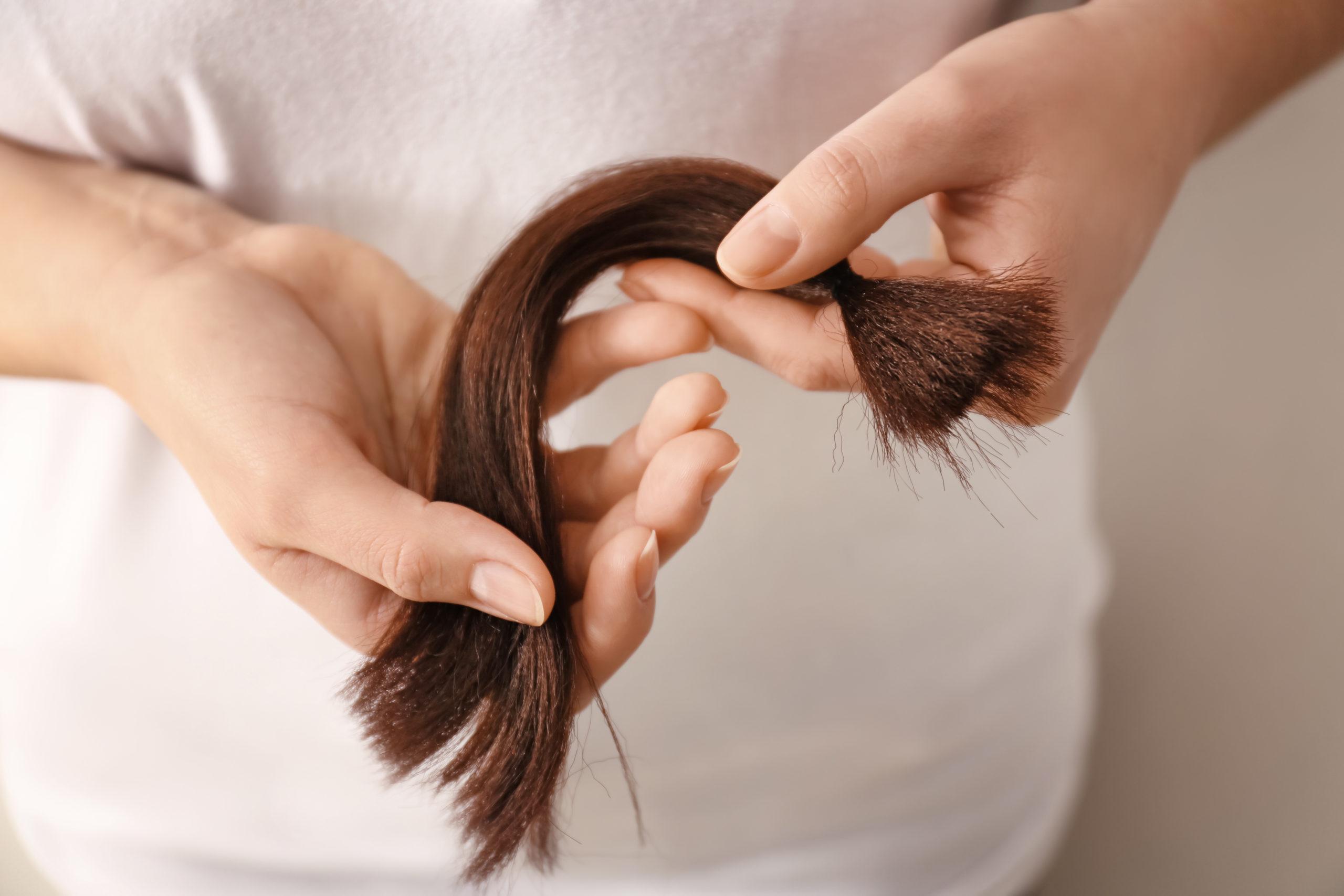 Don de mèches de cheveux à l'association Fake Hair Don't Care